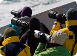 Photographers on Paul's Spitsbergen charter last year