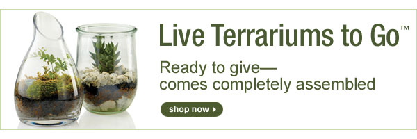 Live Terrariums to GO™