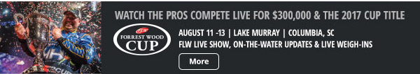 Watch the pros compete